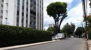 Vila Laura – Apartamento de 3/4 com Suíte + Home + Varanda, Infraestrutura + 1 Vaga Coberta